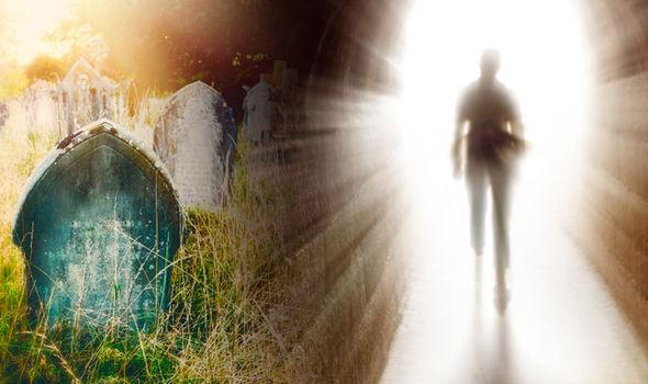 afterlife-716499